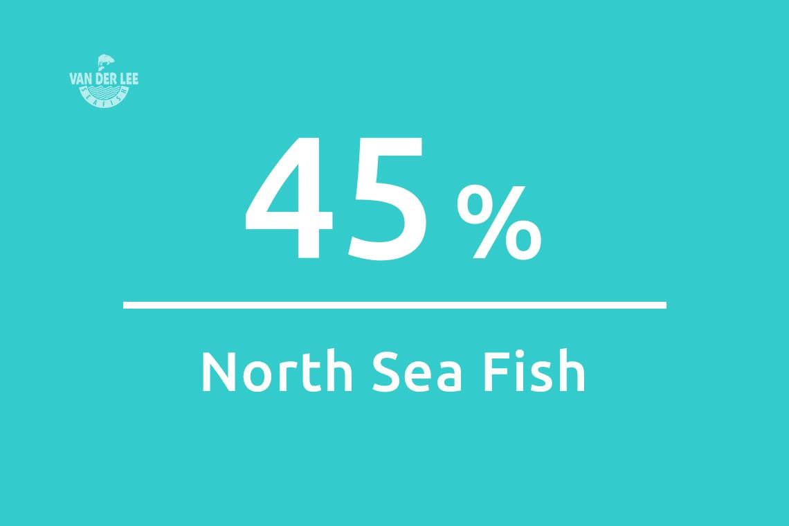 Feiten en cijfers North Sea Fish 2